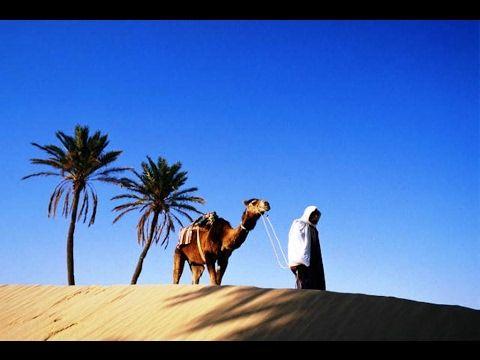5 дней в северной Африке - мое первое знакомство с Тунисом