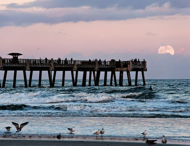 jacksonville florida parks and recreation | ... Park, Fl 32073 Toll Free 888 904-0104 or 904 458-3000 Cell# 904 610