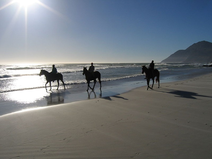 Horseriding on Noordhoek Beach #Cape Town