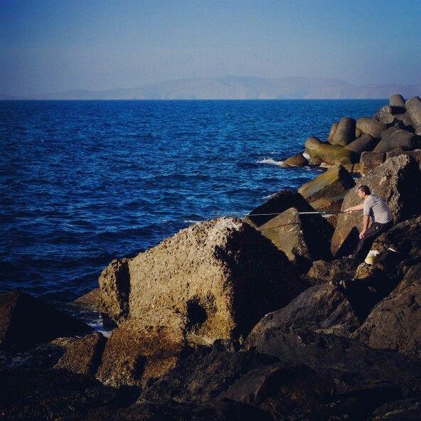 Fishing in venetian port