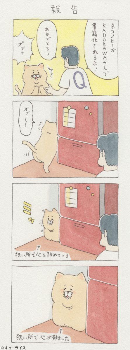 10/30『ネコノヒー』がKADOKAWAさんより書籍化します! Twitter連載分に加えて書籍用に描き下ろした新作漫画もたくさん収録されます!初版限定特典で「綴じ込みシール」付き!Amazonでも予約開始しました! → https://www.amazon.co.jp/dp/4047348872/ 同じく10/30に『ネコノヒー』書籍&グッズ付のDXパックもebtenにて発売が決定しました!単行本に加えて「パーカー」と「どんぶり」がセットになっています。くわしくはウェブサイトebtenをご覧ください。 → http://ebten.jp/eb-store/p/7015017082003/ …