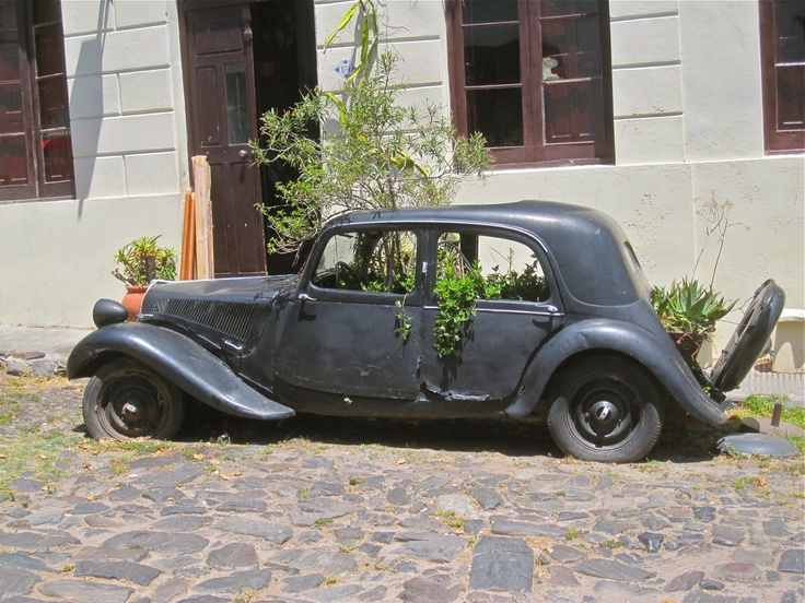 Day Trip to Colonia - The Planted Car.