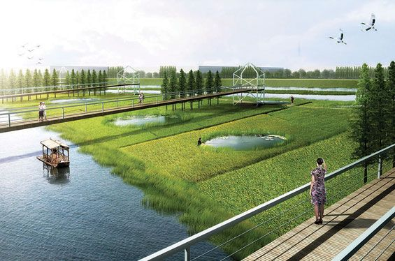 Qingliu river landscape concept chuzhou china tract for Tract landscape architects