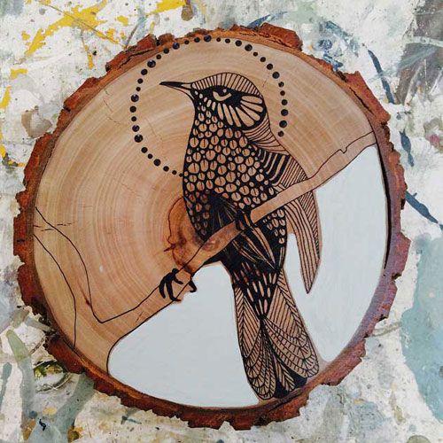 Rufous Bristle Bird artist: dana kinter