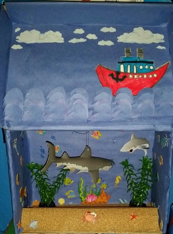 Jake's shark diorama -  second grade school project