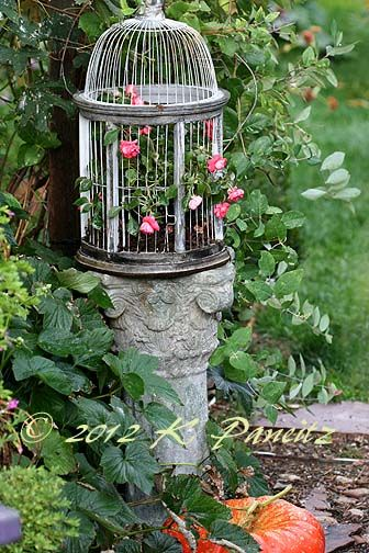 birdcage planter container
