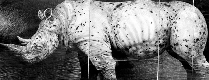 Sick Rhino. Graphite on paper. 80cm x30cm.