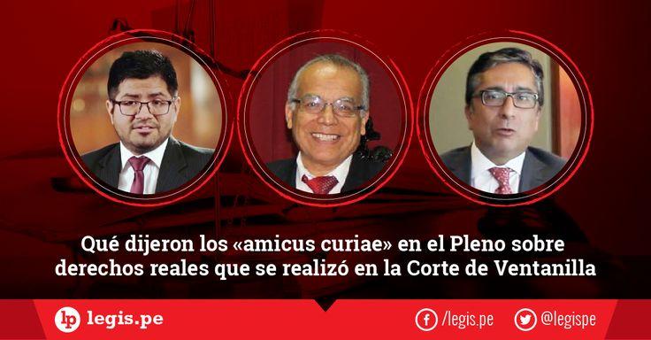 ¿Qué dijeron los «amicus curiae» en el Pleno sobre derechos reales que se realizó en la Corte de Ventanilla?