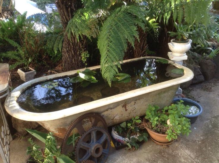 80 best images about water garden ponds on pinterest for Plastic pond tub