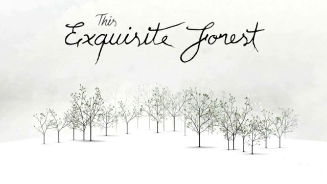 """Why did the Monster Judges choose """"This Exquisite Forest"""" by Google Creative Lab? Watch and see."""