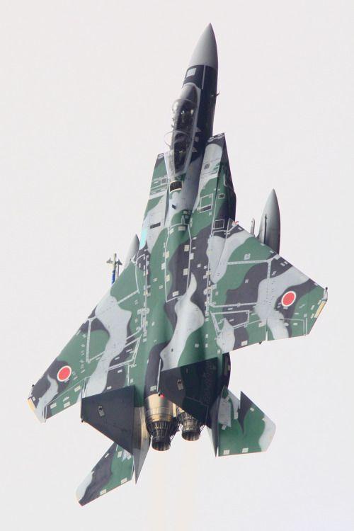 eyestothe-skies: F-15 Eagle, Japan Air Self-Defense Force