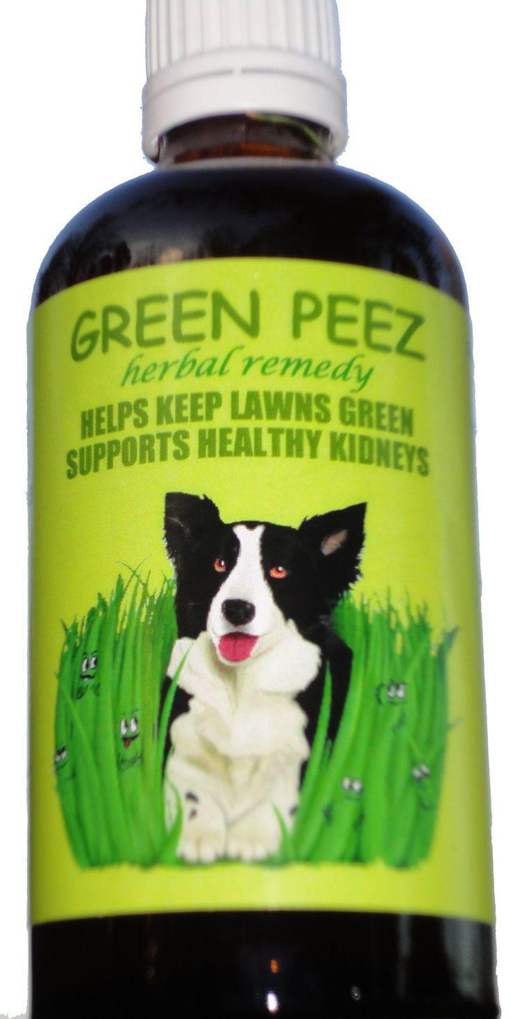 1000 Ideas About Dog Urine On Pinterest Pet