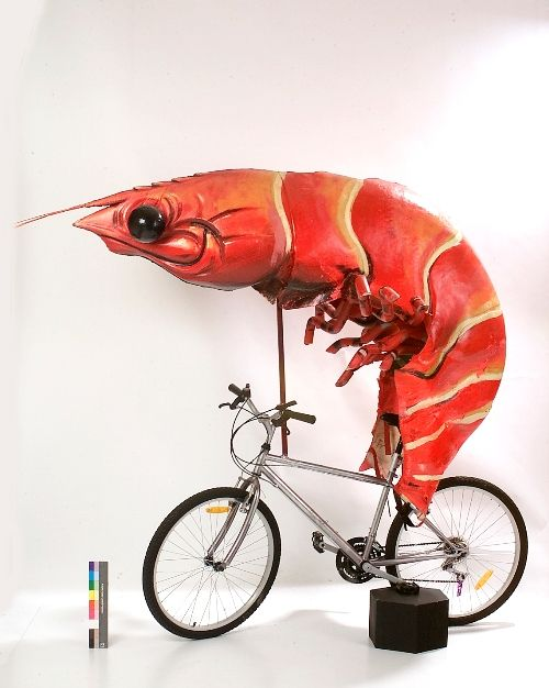 #Costume and #bike used in the Sydney 2000 Olympic Closing Ceremony  Now displayed at the Powerhouse Museum  #BikeCostumes