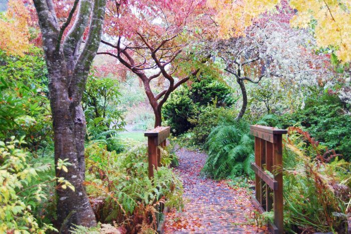 The Connie Hansen Garden is a lovely 1.25-acre hidden gem tucked away in the coastal town of Lincoln City.