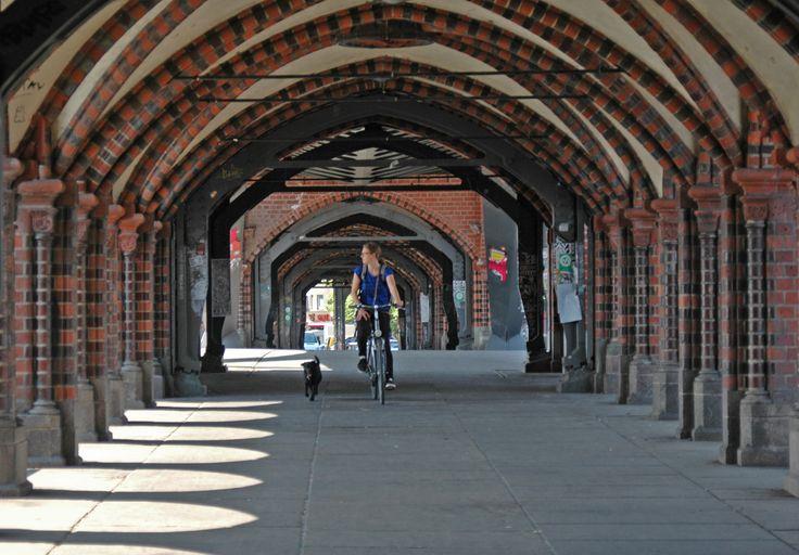 Puente ciclista y canino