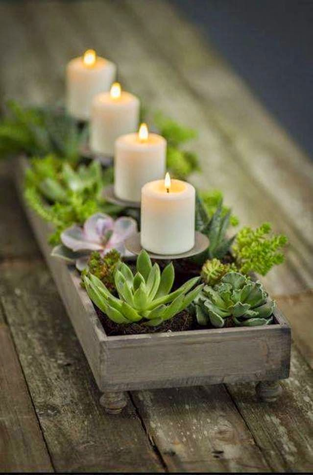 Succulents CP With Candle Holders And Contained In An Old Wooden Box
