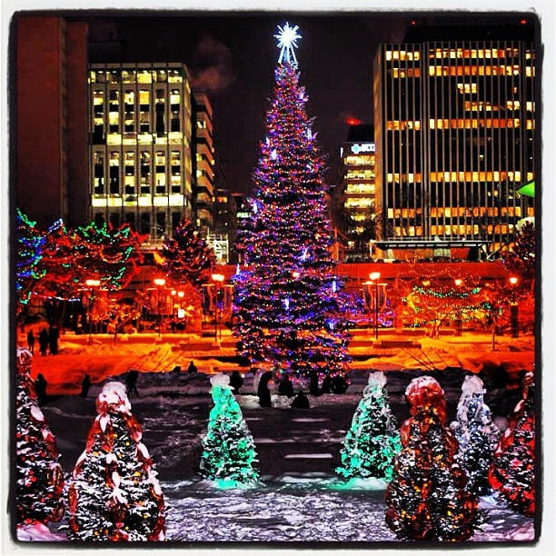Christmas in Edmonton, Alberta