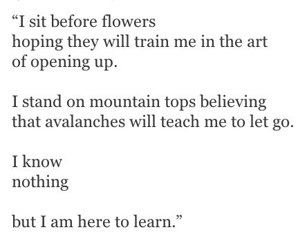 Maybe the mountains can teach me the fine art of letting go ..