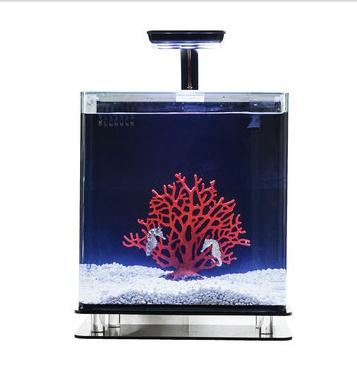 Seahorse Habitat. http://fab.com/sale/9142/product/191011/