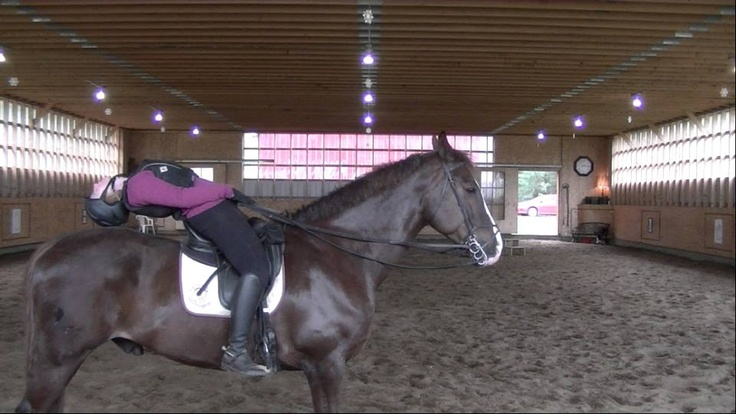 Sitting backbend on a horse.