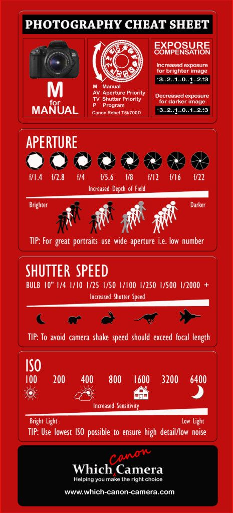 Brand New Photography Cheat Sheet to help you master your digital camera. Master the Manual Setting! Download a fullsize printable version. #photography tips #digital_cameras
