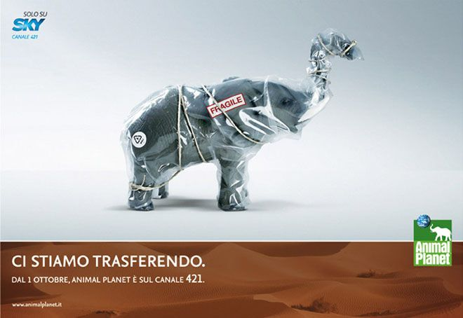 30 Brilliant Advertisement examples around the world for your inspiration. Follow us www.pinterest.com/webneel