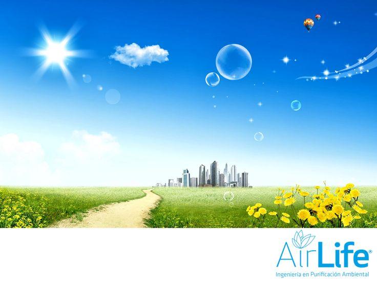 Mejoramos y contrarrestemos la contaminación. LAS MEJORES SOLUCIONES EN PURIFICACIÓN DEL AIRE. Existen distintas fuentes de contaminación como las industrias y los automóviles, cuyas emisiones con el paso del tiempo, van dañando nuestra salud. En AirLife, ofrecemos las mejores soluciones con tecnología especializada, para que todos respiremos seguros y tranquilos. www.airlifeservice.com. #airlife