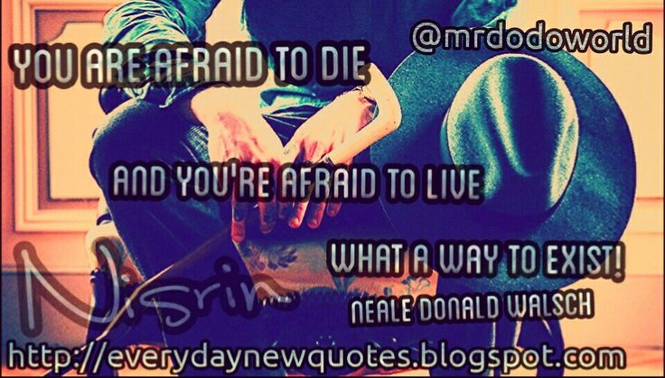 You are afraid to Die and you're afraid to live what a way to exist Neale Donald Walsch  For more great quotes please visit Everyday New Quotes blog:   http://everydaynewquotes.blogspot.se/2015/10/live-your-life.html?m=1  #life #death #existance #quotes #quote #lifequotes #wisdom #words #wisewords #blog #quotesblog #blogger #everyday #new  http://everydaynewquotes.blogspot.com