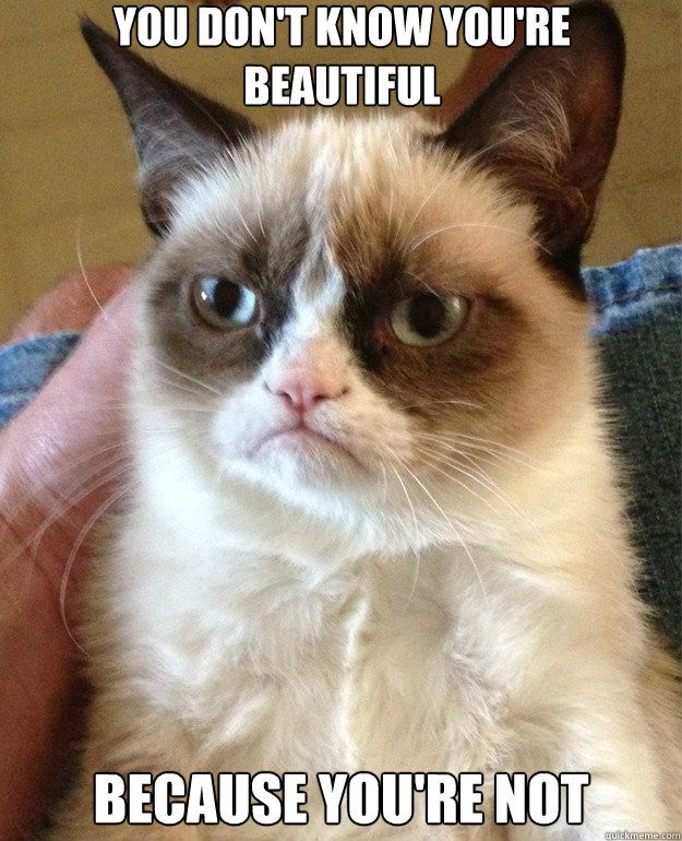 Grumpy Cat is not a fan of One Direction