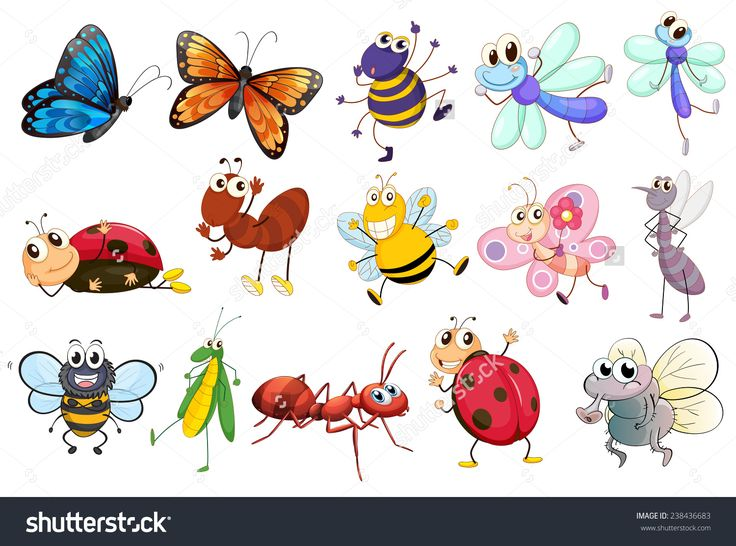 the different types of ants   Saferbrowser Yahoo Image Search Results. 9 best Ants images on Pinterest   Types of ants  Fire ants and