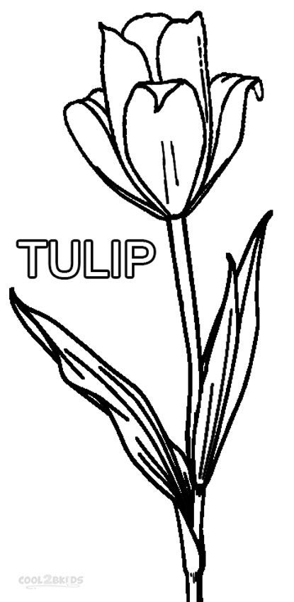 Printable Tulip Coloring Pages For Kids   Cool2bKids ...