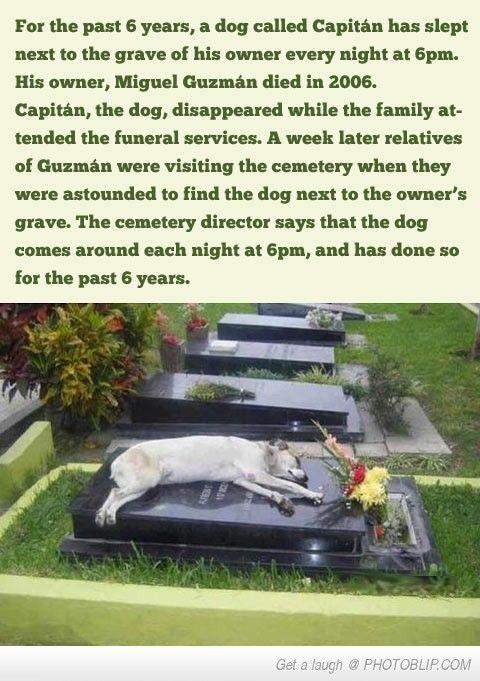 A Touching Story