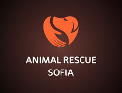 "Bold, simple style, might not convey a holiday/vacation though - ""Animal Rescue Pet Logo Design"""
