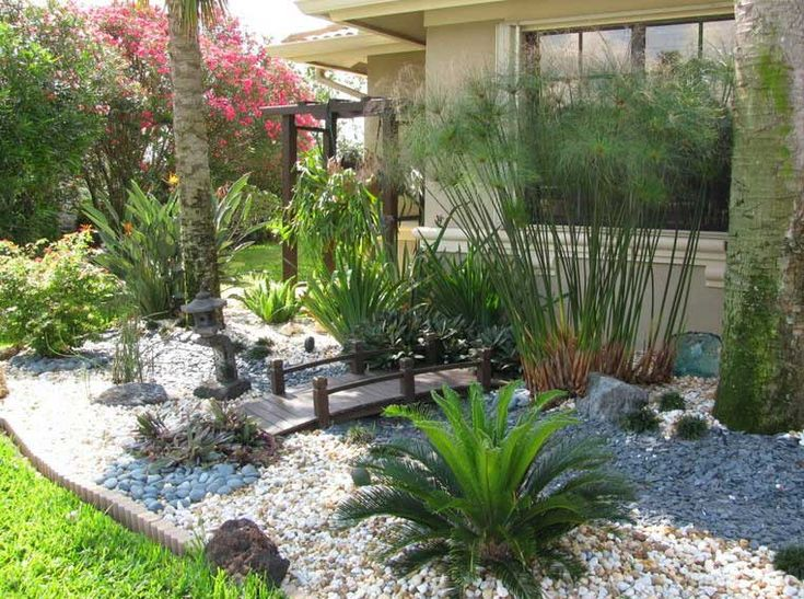 Bon South Florida Landscape Design Miss Fancy Plants Landscape Amp Design How  To Fill Garden Design With Florida Native Plants