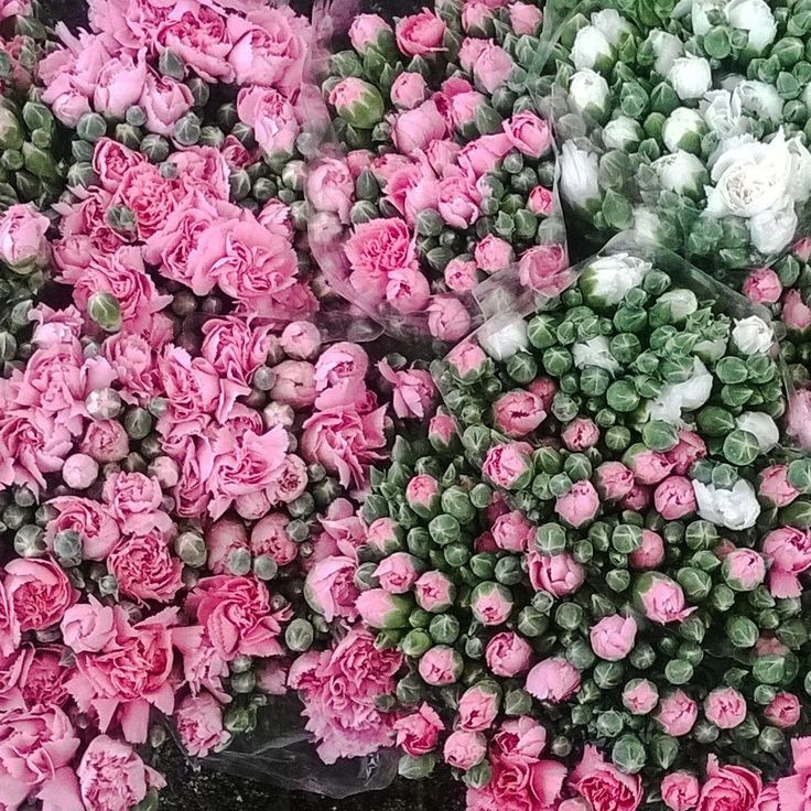 #roses #flowersmarket #pinkroses