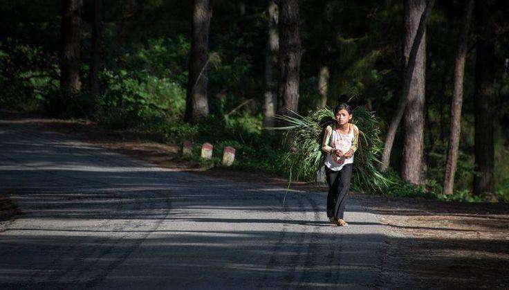 Toi far from school benches #2014 #vietnam #vietnamese #southeastasia #hagiang #north #roadtrip #moto #nikonphotography #nikon @nikoneurope @nikonbelgium #d7100 #35mm #ontheroad #backpacker #worldtrip #travelphotography #travel