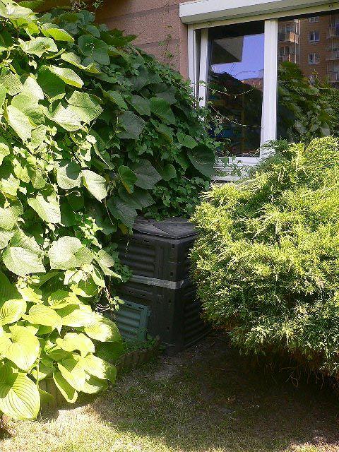 Znalezione obrazy dla zapytania kompostownik w ogrodzie