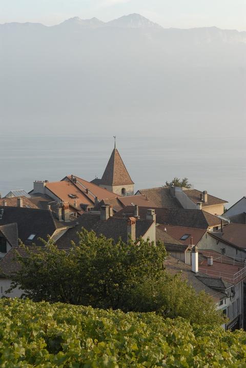 La región de Lavaux en Suiza es conocida por sus vinos. Practica el turismo enológico este verano en #Suiza