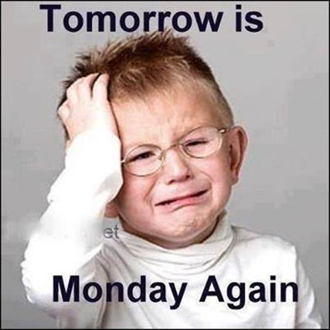 tomorrow is Monday again funny quotes monday days of the week humor