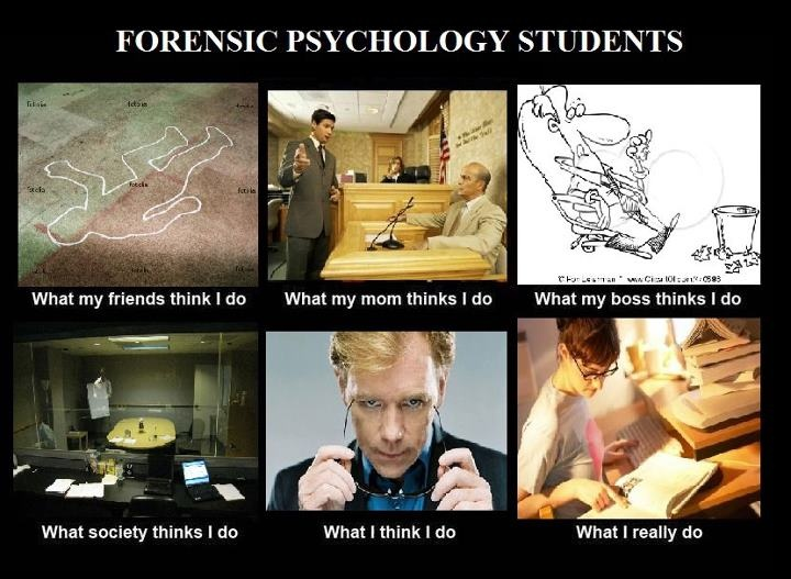 Forensic Psychology samples of research work