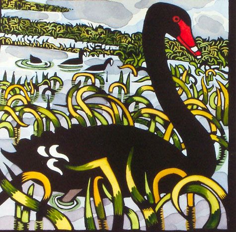 Kit Hiller's Folio : Black Swan