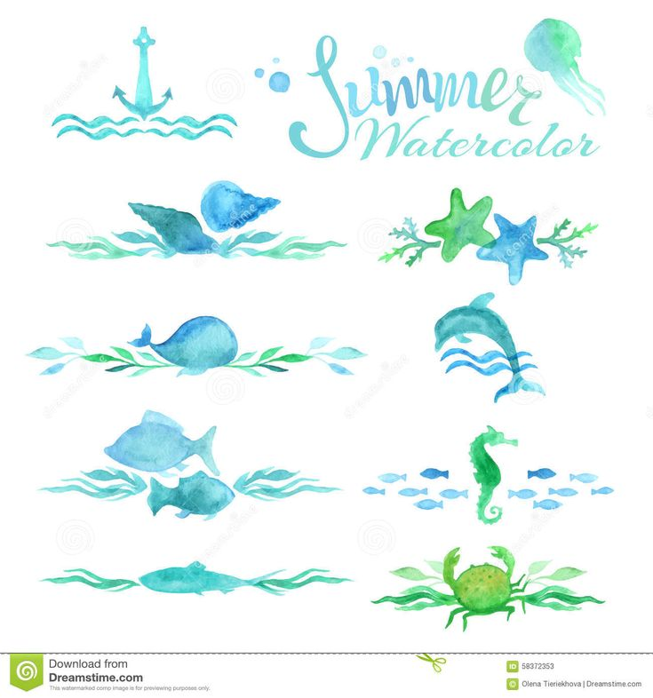 Vector Set Of Watercolor Ocean Page Decorations And Dividers. - Download From Over 53 Million High Quality Stock Photos, Images, Vectors. Sign up for FREE today. Image: 58372353