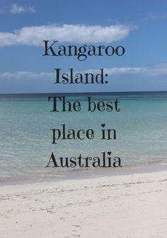 Kangaroo Island_ The best place in Australia
