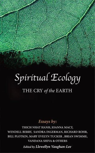 best poetry wendell berry images berry berries spiritual ecology the cry of the earth thich nhat hanh joanna macy