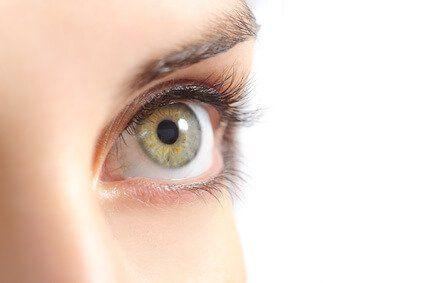 Lassen Sie mit Kokosöl Wimpern und Augenbrauen schneller wachsen und fülliger werden. Das Öl wirkt wie eine Nährlösung und sorgt für schöne Augenblicke.