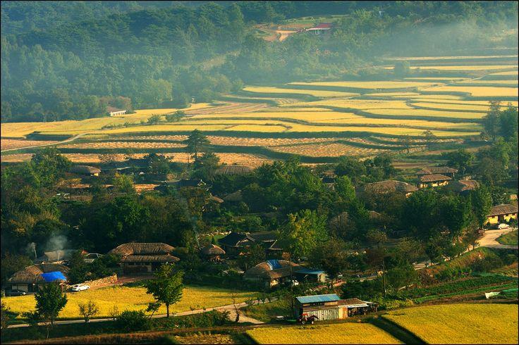 가을 농촌 - Google 검색