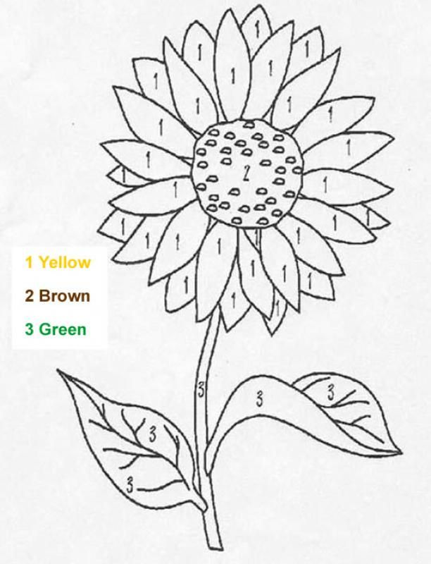 color by number- visual perceptual worksheets   Sunflower ...