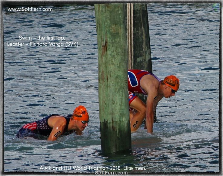 Swim – the first lap. Leader – Richard Varga (SVK) Auckland ITU World Triathlon 2015. Elite men. ... 39  PHOTOS ... Brownlee took control from the start of the run and never let up, winning the race by 15 seconds  http://softfern.com/NewsDtls.aspx?id=1007&catgry=7