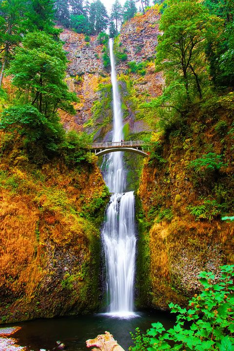 Stunning vacation spot in Portland, Oregon at Multnomah Falls! This city has both beautiful sights and culinary delights.
