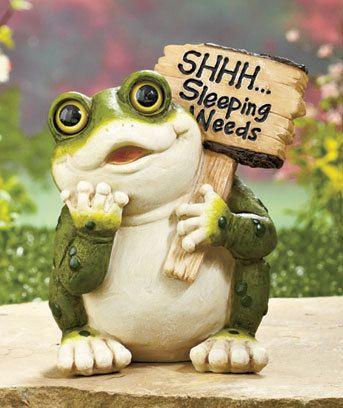 New Garden Yard Frog Statue Decor Sleeping Weeds Saying